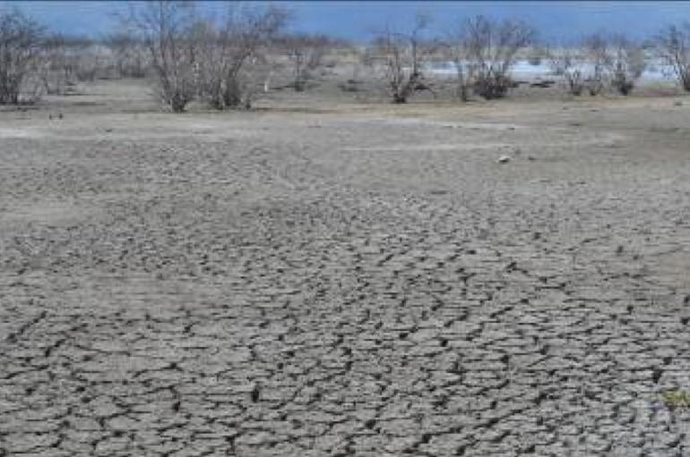 Στέρεψε η λίμνη Κάρλα ~ ΚΑΜΠΑΝΑΚΙ ΑΠΟ ΤΟ ΦΟΡΕΑ ΔΙΑΧΕΙΡΙΣΗΣ