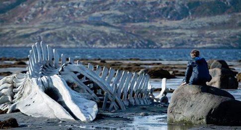 Τον επικριτικό για τη ρωσική ελίτ «Leviathan» στέλνει η Ρωσία στα Όσκαρ