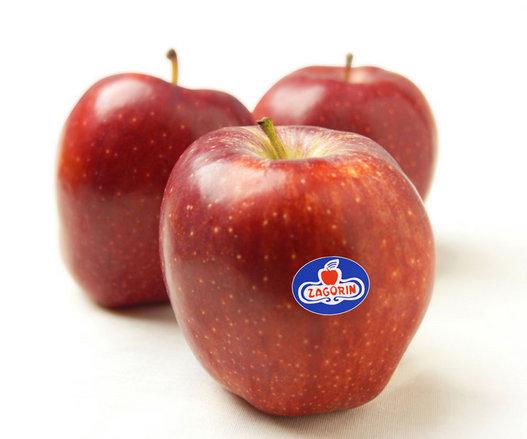 Ολοκληρώθηκε η συγκομιδή μήλων