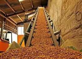 Αντιδρούν για τις μονάδες βιομάζας ~ Κτηνοτρόφοι και αγρότες περιοχής Βελεστίνου