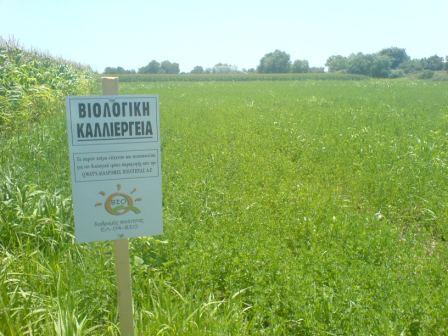 Αποτέλεσμα εικόνας για Βιολογική Γεωργία