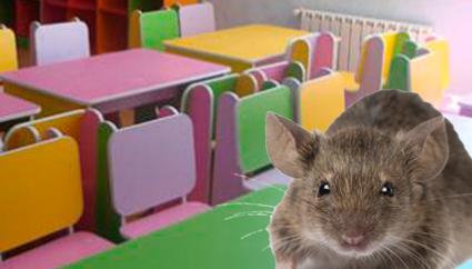 «Συγκάτοικοι» με ποντίκια