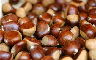 Οι θερμίδες και τα θρεπτικά συστατικά του κάστανου