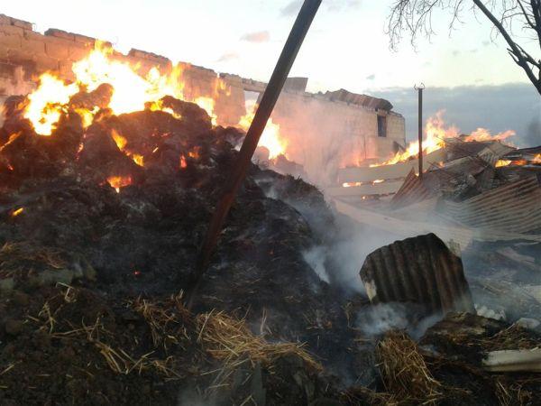 Μεγάλη επιχείρηση κατάσβεσης πυρκαγιάς στα Ρόγγια Τρικάλων