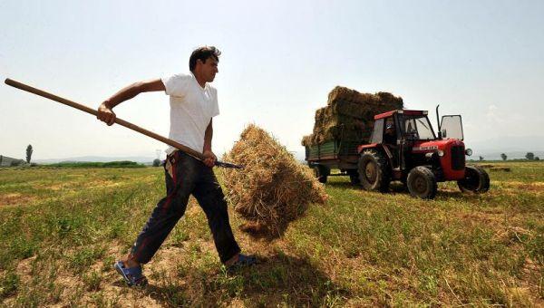 Η αξιοπρέπεια του αγρότη
