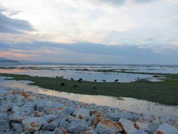 Χάνεται η λίμνη Κάρλα