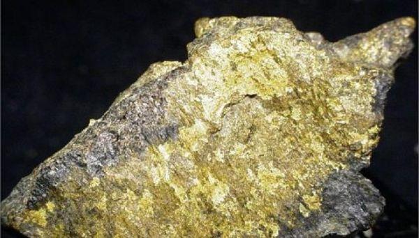 Το μεγαλύτερο κοίτασμα χρυσού «δημιουργήθηκε από μικρόβια»