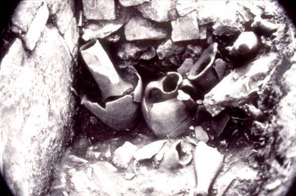 Ιστορία χιλιάδων χρόνων ~ Σημαντικά ευρήματα στην περιοχή του Πανόρμου