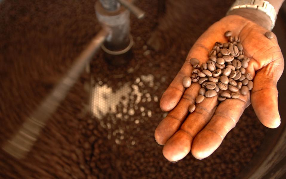 Καφεΐνη, το όπλο των φυτών απέναντι στους εχθρούς τους