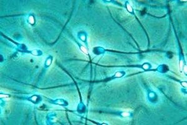 Οι έφηβοι γονείς πιο πιθανό να κληροδοτήσουν γενετικές ανωμαλίες