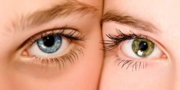 Μάτια: οι δύο φρουροί του ανθρώπου ~ Σύνθεση ρήσεων