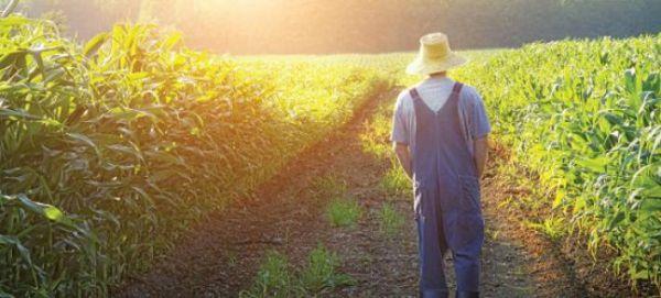 Στρέφονται «στη γη» οι άνεργοι