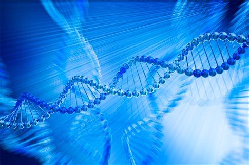 «Δανεικά» γονίδια από άλλα είδη περιέχει το ανθρώπινο DNA