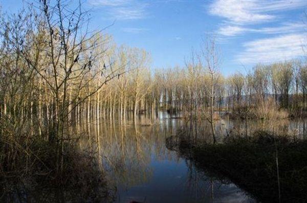 Σέρρες: Χιλιάδες αγροτικές εκτάσεις πνίγηκαν από τα νερά του Στρυμόνα