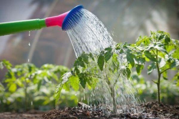 Μέτρα για την ανεξέλεγκτη κατανάλωση νερού