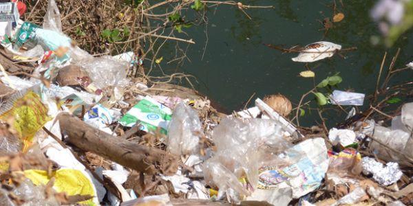 Εκπαιδευτικό πρόγραμμα κατά της ρύπανσης στην Αλόννησο