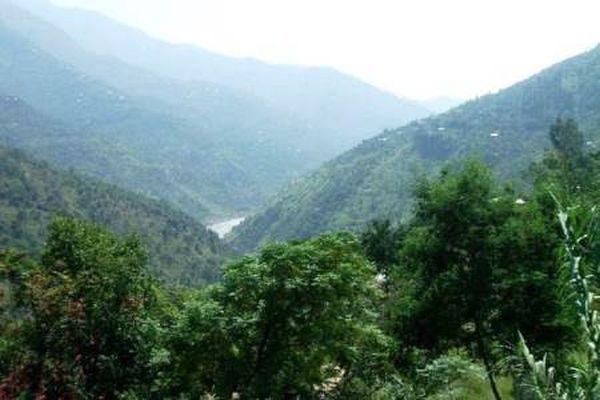 Επαρχία του Πακιστάν φυτεύει ένα δισ. δέντρα σε μνημειώδη αναδάσωση