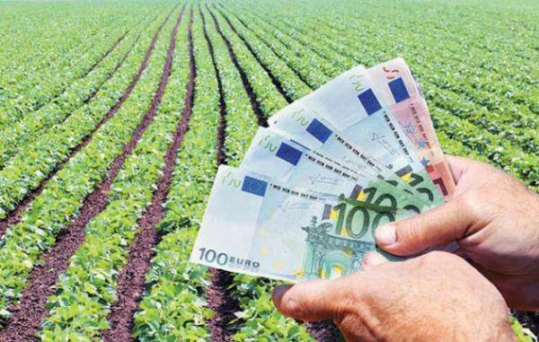 Ερώτηση της βουλευτή Κ. Παπανάτσιου για τα πρόστιμα για αγροτικές ενισχύσεις