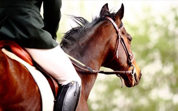 Τραυματισμός 45χρονης, ενώ ίππευε άλογο