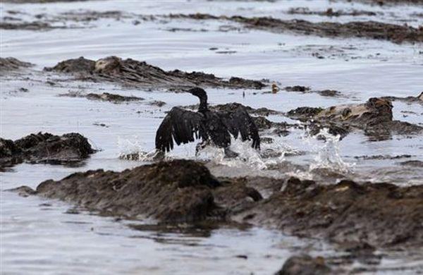 Νέα πετρελαιοκηλίδα στην Καλιφόρνια, ανησυχία για τα αίτια