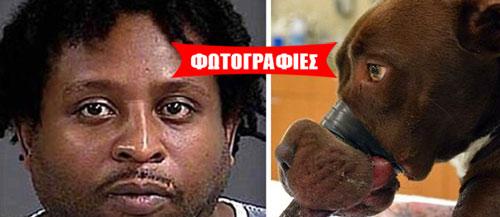 Απίστευτος βασανισμός αδέσποτου στις ΗΠΑ