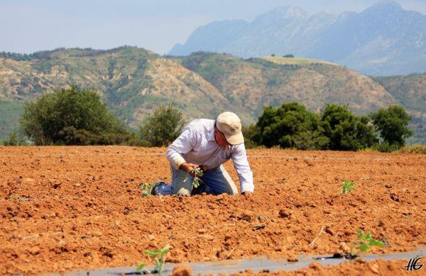 Τα δικαιώματα των αγροκτηνοτρόφων