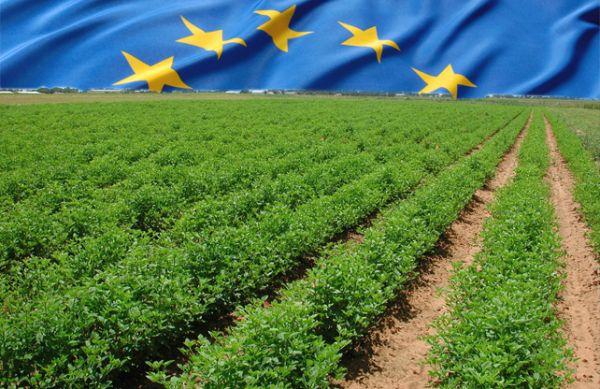 Νέοι Αγρότες ή «καινούργιοι» για την Κοινή Γεωργική Πολιτική;