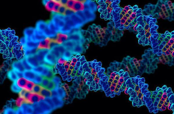 Πειραματική γονιδιακή θεραπεία σταθεροποιεί την κυστική ίνωση