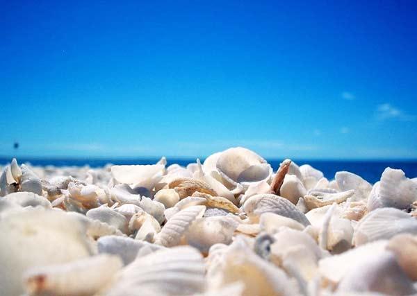 Εξαιρετικής ποιότητας οι ακτές του Βόλου