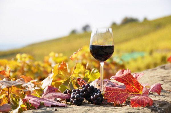 Προετοιμασίες για τη Γιορτή Κρασιού στη Ν. Αγχίαλο