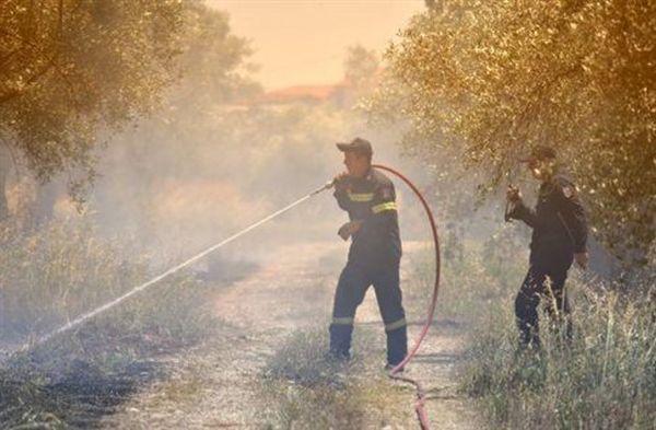 Πυρκαγιά σε δασική έκταση στον Άγιο Στέφανο
