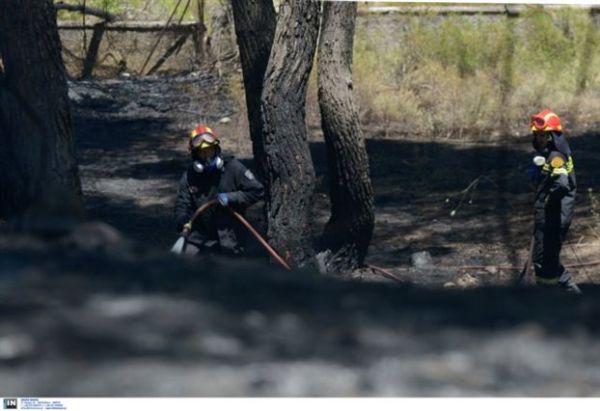 Οριοθετήθηκε η φωτιά στη Σαμοθράκη, υπό μερικό έλεγχο στην Κυλλήνη