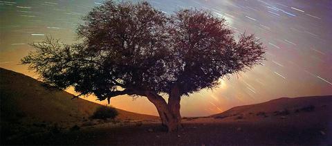Ουράνιο σόου από τη 'Βροχή των Περσείδων'