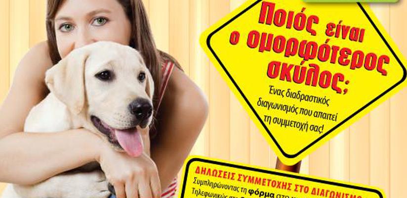 Dog days 2015: Μια γιορτή αφιερωμένη στο σκύλο!