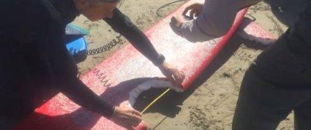 Έκανε σέρφινγκ και παραλίγο να τον καταβροχθίσει ένας τεράστιος λευκός καρχαρίας