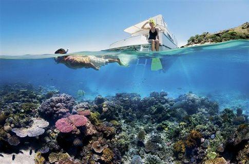 Τα κοράλλια «πεθαίνουν πασαλειμμένα με αντηλιακό»