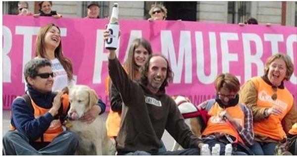 Η Μαδρίτη απαγόρευσε την εγκατάλειψη και τη θανάτωση αδέσποτων ζώων