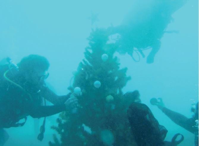 Στολίζουν υποβρύχιο δέντρο στην Αλόννησο