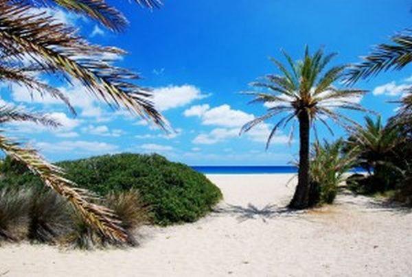 Μια βόλτα στο Βάι της Κρήτης μέσα από το φακό!