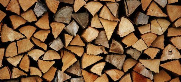Ο Δήμος Αλμυρού συγκέντρωσε 30 τόνους ξύλα
