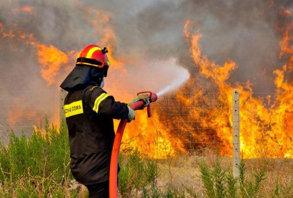 Πυρκαγιά σε κλαδία και σκουπίδια στο Πτελεό