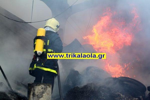 Τρίκαλα: Κάηκε ζωντανός στο χοιροστάσιό του 72χρονος