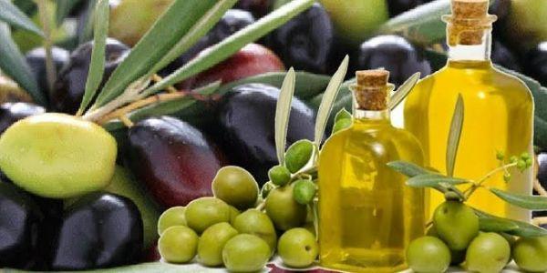 Συμμετοχή παραγωγών της Περιφέρειας Θεσσαλίας στην 26η AGROTICA
