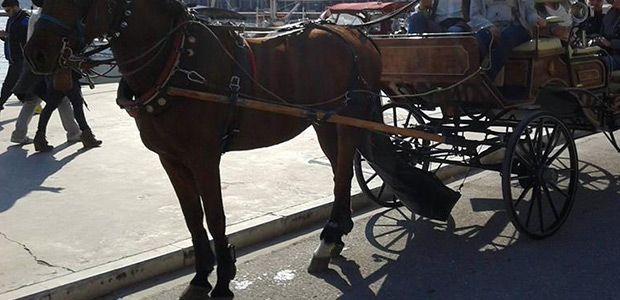 Απαγορευτικό για τις άμαξες στην παραλία του Βόλου