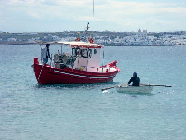 Μηνιαία δήλωση παραγωγής για επαγγελματικά αλιευτικά σκάφη