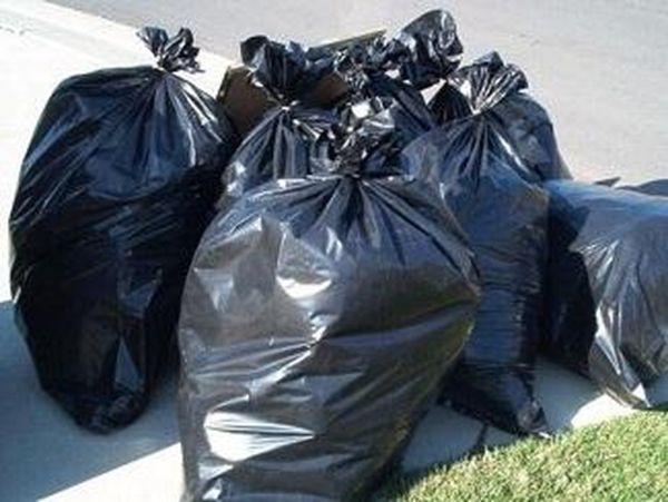 100 σακούλες σκουπίδια μάζεψαν Καναδοί, Ελβετοί και Αλβανοί φοιτητές