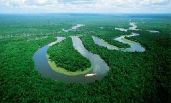 Η Λαϊκή Δημοκρατία του Κονγκό ανοίγει τα τροπικά δάση της στους υλοτόμους