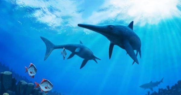 Η Κλιματική Αλλαγή εξαφάνισε τους «θαλάσσιους δράκους»