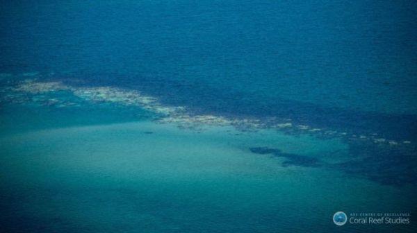 Το Ελ Νίνιο ξέβαψε τον Μεγάλο Κοραλλιογενή Ύφαλο