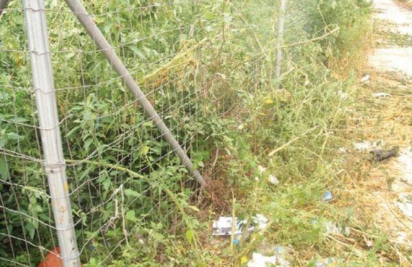 Σπίτια - χωματερές, οικόπεδα - ζούγκλες στο κέντρο του Βόλου